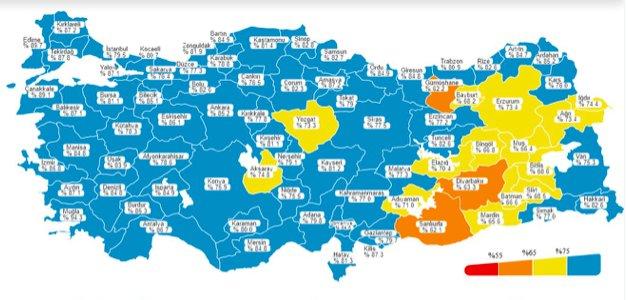 Türkiye Mavi'ye Dönüyor Ama Vaka Sayıları Düşmüyor !